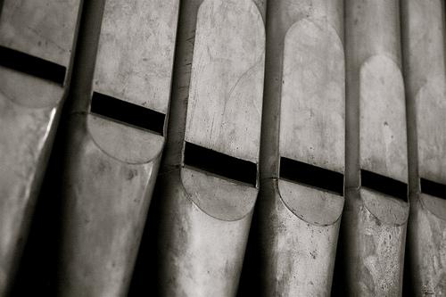 Organpipes