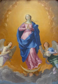 Metreniimmaculateconception_2